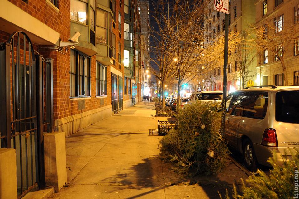 Елки на улицах Нью-Йорка