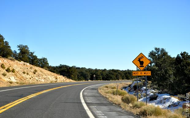 Дороги в США (Штат Аризона)