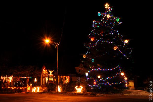 Новогодняя ель в Спрингдейле (Springdale) - городке около Зайон парка