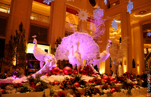 Белые павлины в Палаццо (The Shoppes At The Palazzo)