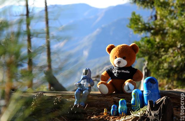 Участники экспедиции медвежонок TopCrop Meidia, матрешки Intel lookinside и Bunny Man на прогулке в долине Йосемити