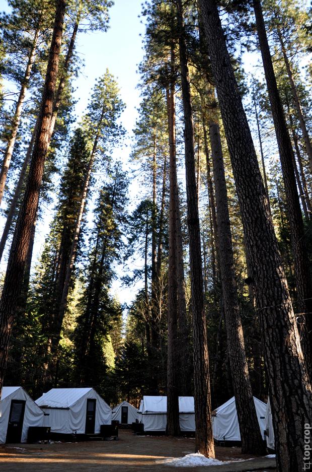 Палаточный городок Camp Curry, Yosemite National Park
