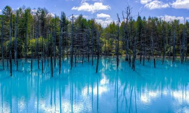 Японский Голубой пруд