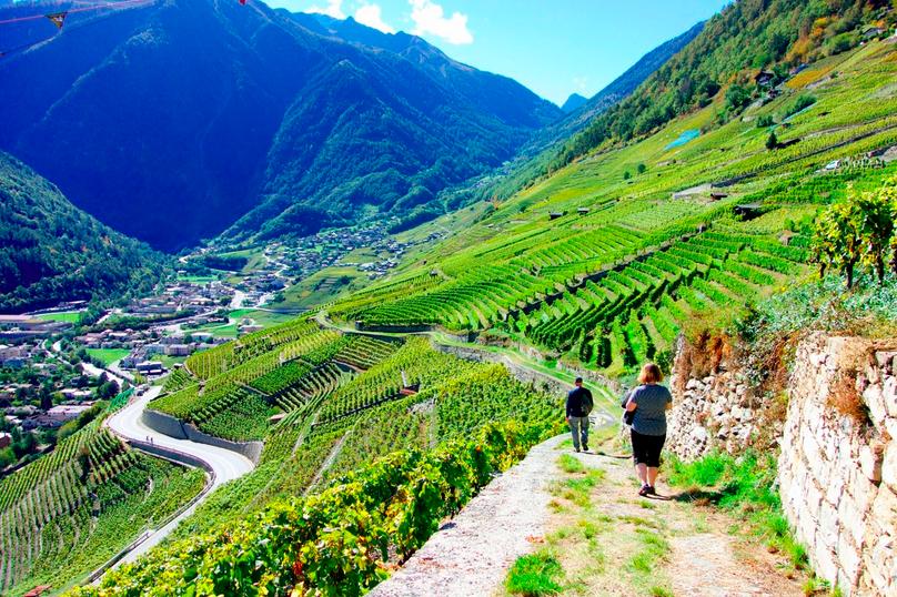 The Chemins des Vignes, Мартиньи, Швейцария, путешествия