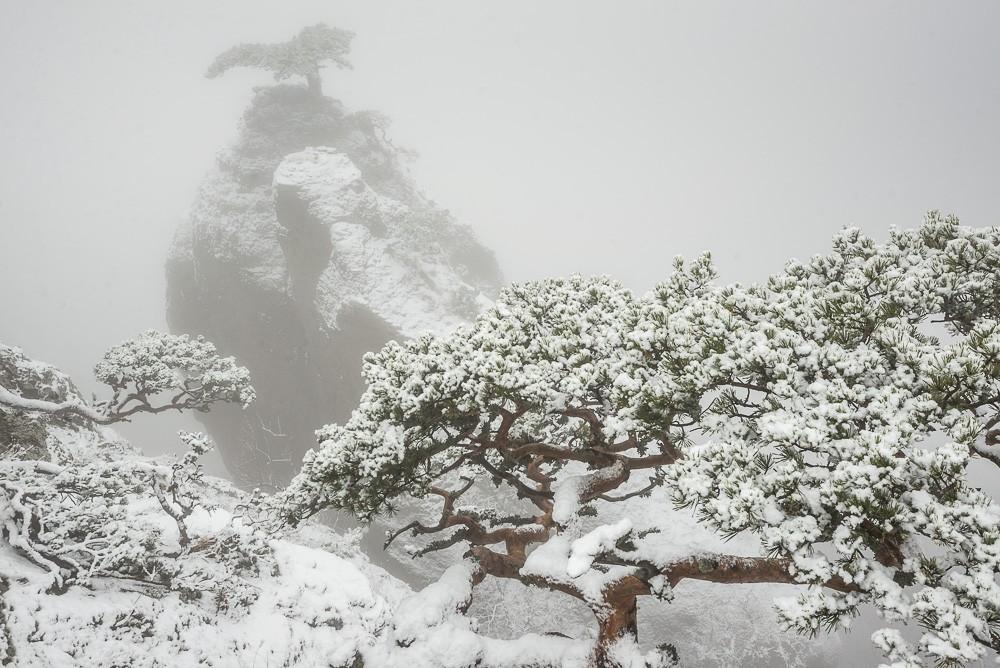 зима, Крым, путешествия