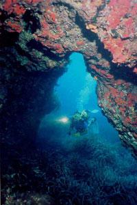 Мальта и Гозо добиваются мирового успеха и привлекают туристов со всего света.