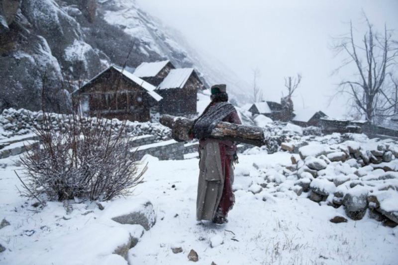 Снимок женщины, несущей дрова в индийском селении
