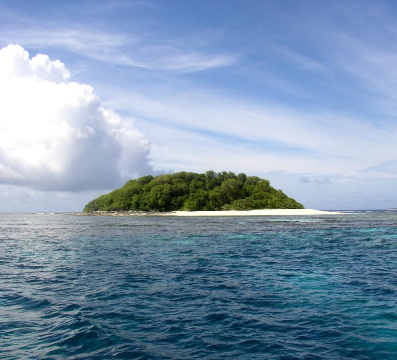 Остров в Тихом океане расположен в месте наиболее популярных круизных маршрутов и местах наблюдения за китами.