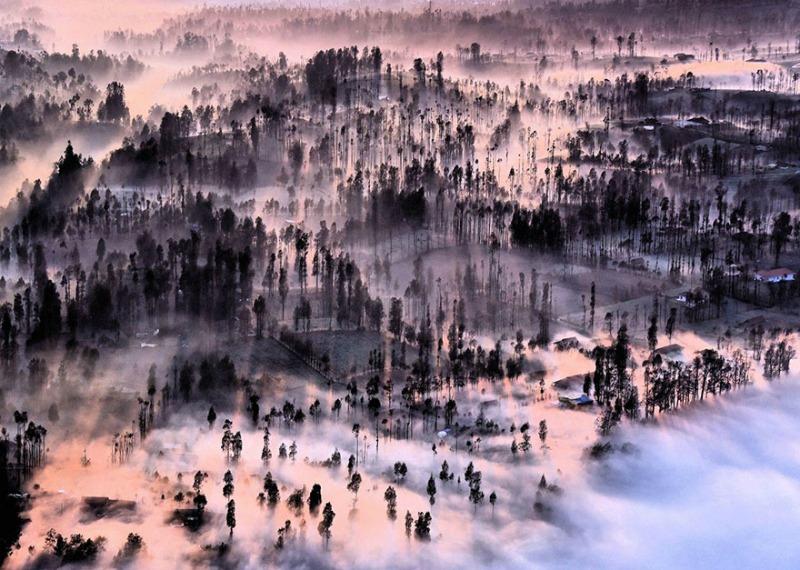 «Туман в деревне Чеморо Лаванг»