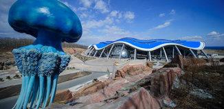 Океанариум во Владивостоке