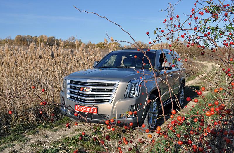 Cadillac Escalade серого цвета